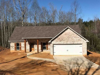 Florence, Richland Single Family Home For Sale: 289 Trudy Ln