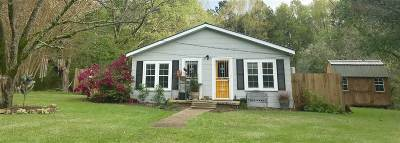 Brandon Single Family Home Contingent/Pending: 235 Old Hwy 80