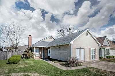 Brandon Single Family Home For Sale: 325 Pelahatchie Shore Dr