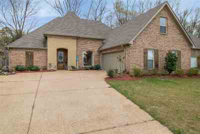 Brandon Single Family Home For Sale: 439 Julee Cir