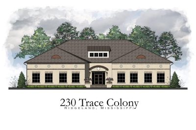 Ridgeland Rental For Rent: 230 Trace Colony Parkway