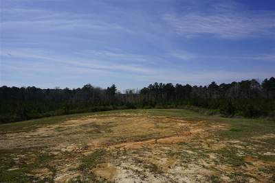Leake County Residential Lots & Land For Sale: 8015 Hwy 13 North Hwy