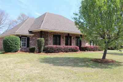 Ridgeland Single Family Home Contingent: 347 Red Eagle Cir