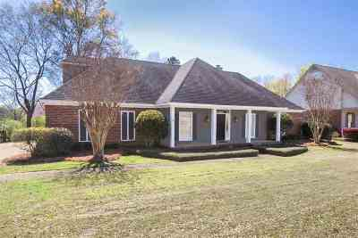 Ridgeland Single Family Home For Sale: 291 Red Eagle Cir