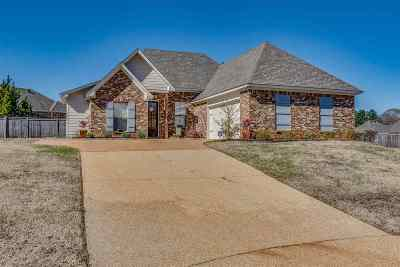 Madison Single Family Home For Sale: 2505 Chase Ct