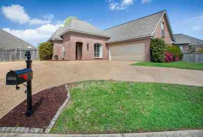 Pearl Single Family Home For Sale: 106 Lake Pointe Dr