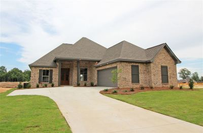 Brandon Single Family Home For Sale: 669 Conti Dr