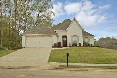 Canton Single Family Home For Sale: 120 Bridge Walk Dr