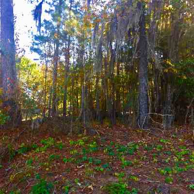 Madison Residential Lots & Land For Sale: 435 Cheyenne Ln