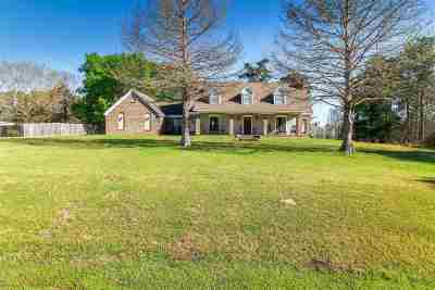 Pearl Single Family Home Contingent: 412 Belvedere Dr