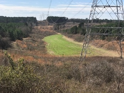 Attala County Residential Lots & Land For Sale: County Road 4216