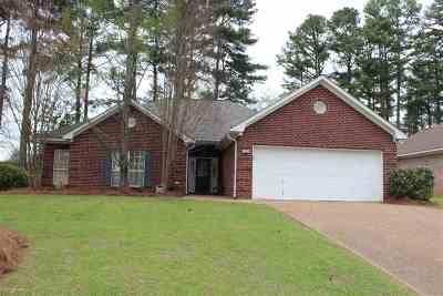 Ridgeland Single Family Home For Sale: 313 Pinewood Ln
