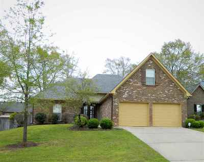 Canton Single Family Home For Sale: 114 Wells Ct
