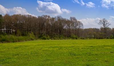 Florence MS Residential Lots & Land For Sale: $250,000