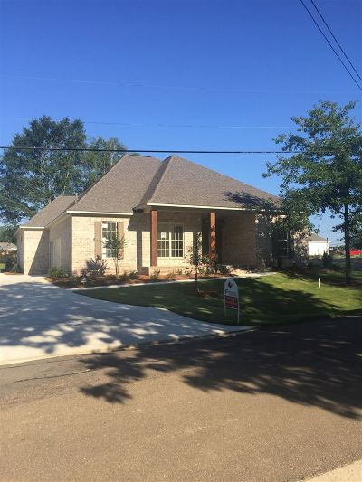 Ridgeland Single Family Home For Sale: 241 Central Ave