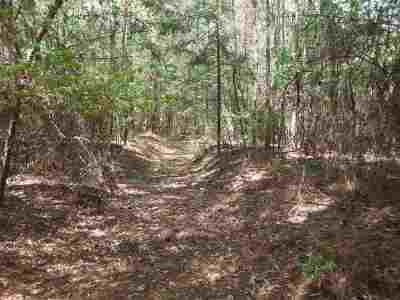 Forest MS Residential Lots & Land Contingent/Pending: $220,000