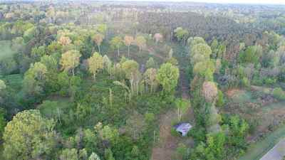 Pearl Residential Lots & Land For Sale: 246 Promise Landing Pkwy