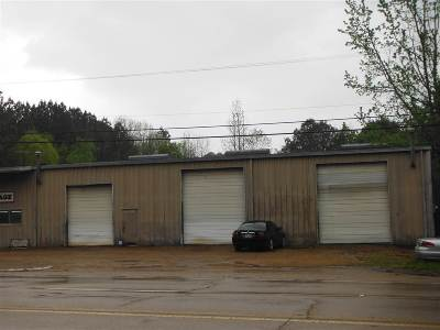 Carthage MS Commercial For Sale: $350,000