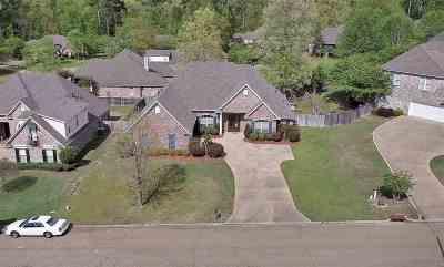 Brandon Single Family Home For Sale: 514 Fox Bay Ridge