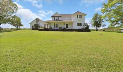 Rankin County Single Family Home For Sale: 4036 Hwy 80 East