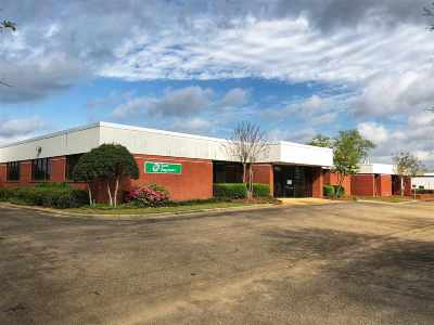 Rankin County Commercial For Sale: 1031 N Flowood Dr