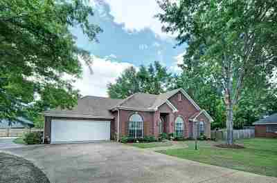 Clinton Single Family Home For Sale: 115 Pawnee Pl