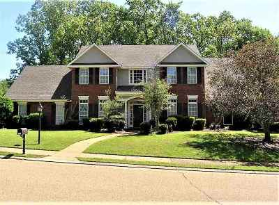 Hinds County Single Family Home Contingent/Pending: 201 Bordeaux Dr