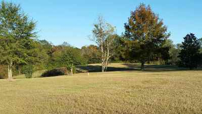 Mendenhall Residential Lots & Land For Sale: 396 Doctor Magee Rd.