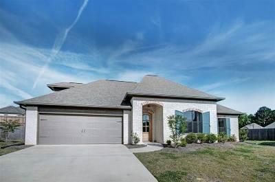 Brandon Single Family Home For Sale: 205 Willow Grande Ct