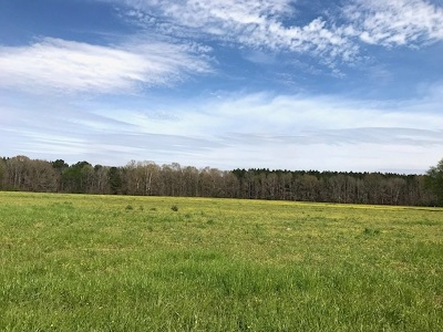 Brandon Residential Lots & Land For Sale: 3 Stump Ridge Rd
