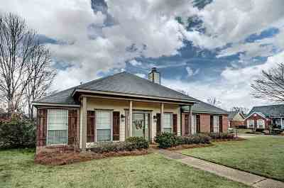 Flowood Single Family Home Contingent: 210 Hemlock Dr