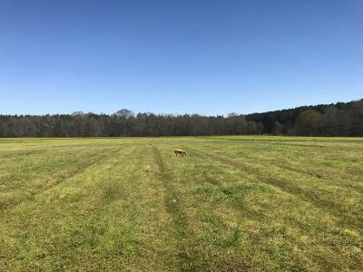 Brandon Residential Lots & Land Contingent: 8 Stump Ridge Rd