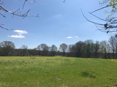 Brandon Residential Lots & Land For Sale: 11 Hollybush Dr