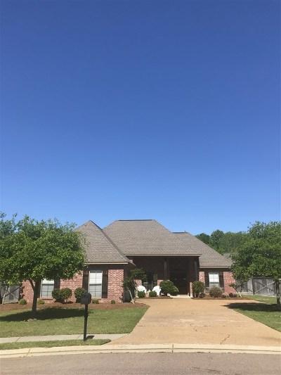 Brandon Single Family Home For Sale: 903 Belle Oak Cv