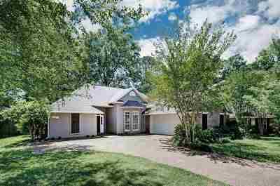 Brandon Single Family Home For Sale: 417 Brighton Ct