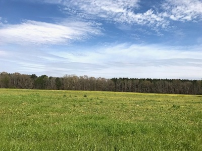 Brandon Residential Lots & Land For Sale: 5 Stump Ridge Rd