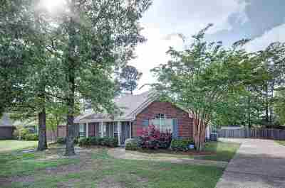 Single Family Home Contingent: 316 Wood Duck Cir