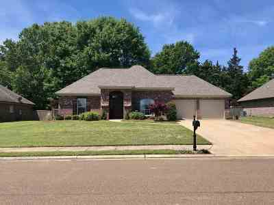 Canton Single Family Home Contingent/Pending: 245 Brigade Ave