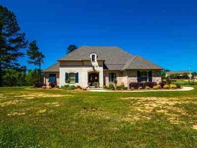 Brandon Single Family Home Contingent: 245 Landmark Cv