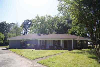 Ridgeland Single Family Home For Sale: 143 Chinquipin Cv