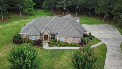Brandon Single Family Home For Sale: 317 Kitty Hawk Cir