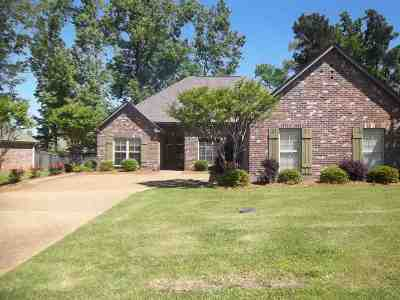 Rankin County Single Family Home For Sale: 313 Turtle Hollow