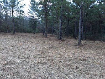 Residential Lots & Land For Sale: N Jordan St