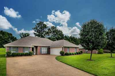 Single Family Home For Sale: 3007 Cross Pointe Cv