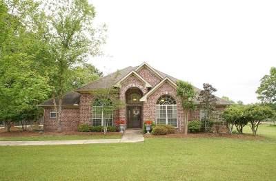 Brandon Single Family Home For Sale: 102 Sandstone Dr
