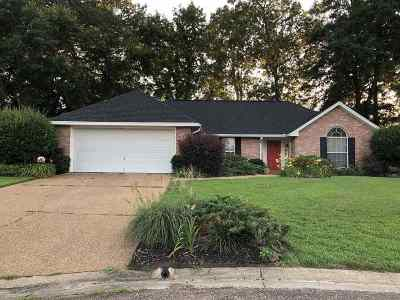 Byram Single Family Home For Sale: 1019 Windmill Dr
