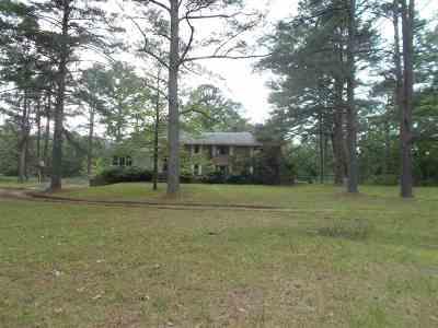 Brandon Single Family Home For Sale: 704 Brenmar St