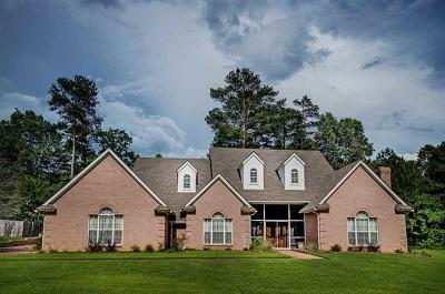 Brandon Single Family Home For Sale: 202 W Armistead Dr