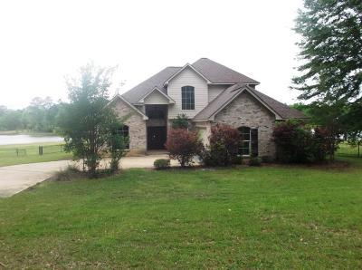 Brandon Single Family Home Contingent/Pending: 213 Overlook Cv