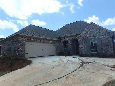 Canton Single Family Home For Sale: 214 Buttonwood Lane #lot 52
